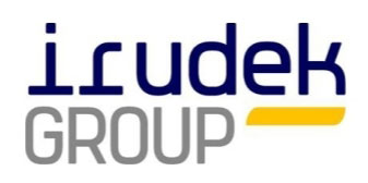 Logo Irudek Group